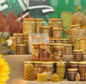 Świętokrzyskie Święto Pszczoły w Bałtowie